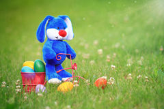 Blue Easter Bunny Riding a Tricycle. With a basket full of colorful easter eggs in the grass Royalty Free Stock Photos