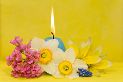 Blue easter cande with  flowers Stock Image