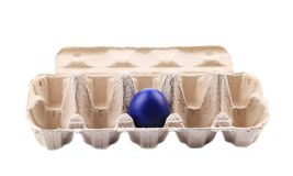 Blue easter egg in box. Royalty Free Stock Images