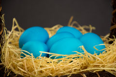 Blue easter egg Royalty Free Stock Photography