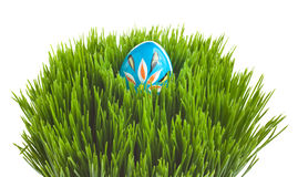 Blue Easter egg on green grass. Hand painted Easter egg arranged on a grass basket Stock Photography