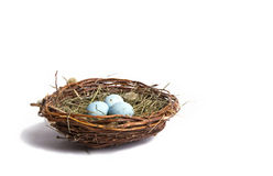 Blue easter egg nest Royalty Free Stock Photo