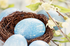 Blue Easter Egg in Nest Stock Photo