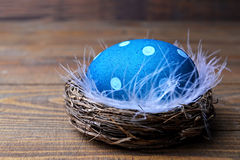 Blue Easter egg in the nest with feathers Stock Photos