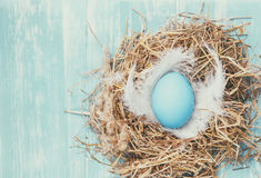 Blue Easter egg in the nest Royalty Free Stock Photos