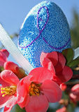 Blue Easter egg and red flowers bloom in spring Stock Images