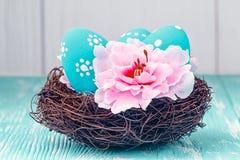 Blue Easter eggs in nest Stock Images