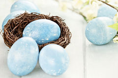 Blue Easter Eggs and Nest Royalty Free Stock Photos