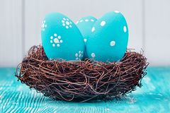 Blue Easter eggs in nest Stock Photo
