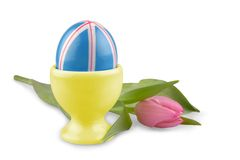 Blue Easter eggs with pink tulip, isolated Stock Photos