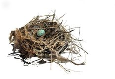 Blue Egg in a Nest Royalty Free Stock Photos