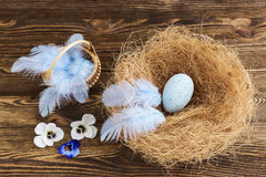 Blue egg in a nest with feathers Royalty Free Stock Photos