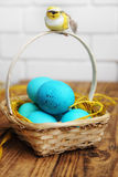 Blue eggs Royalty Free Stock Image