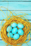 Blue eggs  top view Stock Images