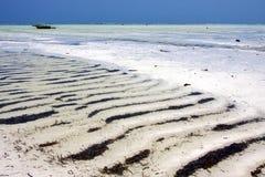 In the  blue elax  of zanzibar  coastline  pirague Royalty Free Stock Photos