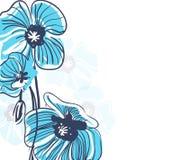 Blue elegance background Stock Image