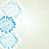 Blue elegant flowers Stock Photos