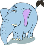 Blue Elephant  illustration. Clipart Stock Photography