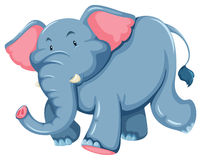 Blue elephant. One blue elephant on a white background Stock Photo