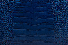 Blue embossed leather texture background Stock Photography