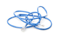 A blue ethernet cable. Against a white background Royalty Free Stock Images