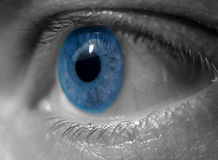 Blue eye. Eye closeup in blue and b/w duotone. Conceptual image for vision royalty free stock image