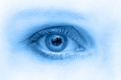 Blue eye. Woman eye macro shoot in blue tone Royalty Free Stock Image