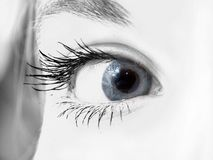 Blue eye. Photo of a woman blue eye Royalty Free Stock Photo