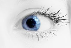 Blue eye. Photo of a beautiful woman blue eye Stock Photos