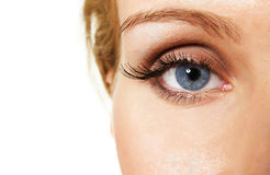 Blue eye. Female blue eye with glittering makeup and false lashes; closeup royalty free stock images