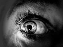 Free Blue Eye Royalty Free Stock Photos - 1300918