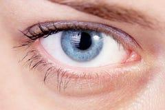 Blue eye. Beautiful blue eye, close up stock photo Stock Photos