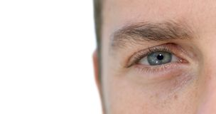Blue Eye. A close up of a blue eye of a blond guy Royalty Free Stock Photography