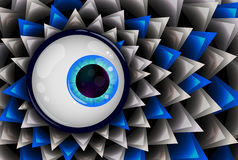 Blue eye. Highly detailed image of the eye. Vector Royalty Free Stock Photos