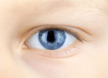 Blue eye. Of young child in the close up view Royalty Free Stock Photos