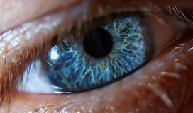Blue eye. Close up of a human blue eye royalty free stock photography