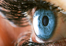 Blue eye Royalty Free Stock Image