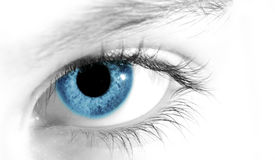 Blue eye royalty free stock images