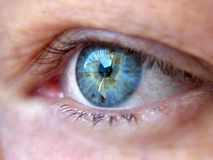 Blue eye. Beautiful blue eye royalty free stock photography