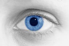 Blue eye. Black and white photo with blue eye Stock Image