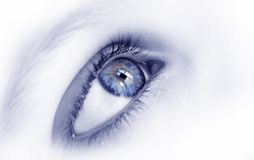 Blue eye. Woman eye...girl eye Stock Photos