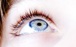 Blue Eye. Photo of a young woman blue eye Royalty Free Stock Images