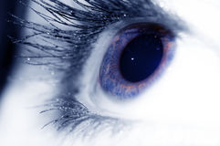 Blue eye. One woman blue eye...big iris Stock Images