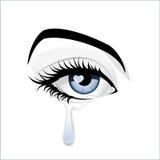 blue eye Στοκ Εικόνα