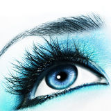 Blue Eye Royalty Free Stock Photos