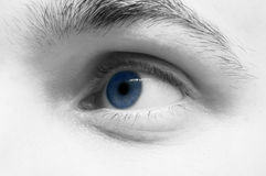 Blue eye. Man eye...friend blue eye Royalty Free Stock Image