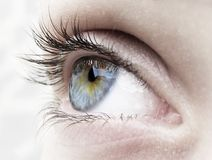 Blue eye. Woman eye...girl eye..beautiful Stock Photography