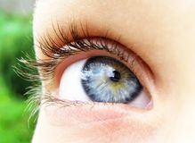 Blue eye. Young woman blue eye ...up see Stock Photography
