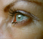 Blue eye. Eye royalty free stock photo