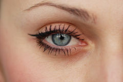 Blue eye. Makeup with eyebrow Royalty Free Stock Photo